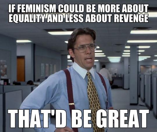 feminismrevenge